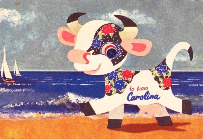 mucca-carolina-1