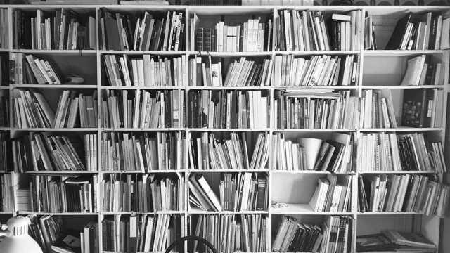 biblioteca_low
